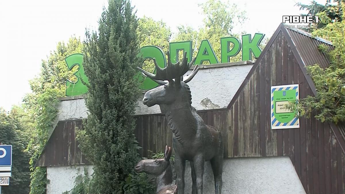 Поблизу Рівненського зоопарку побільшає паркомісць (ВІДЕО)
