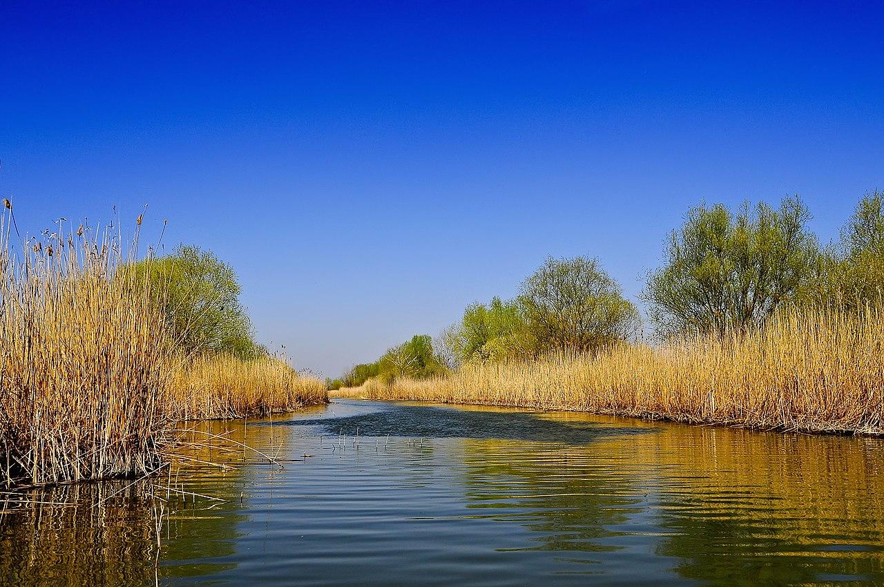 Розташований в Одеській області