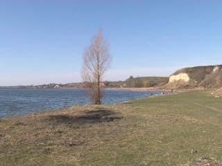 На Рівненщині зарибнили Хрінницьке водосховище