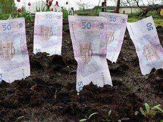 Землевласники Рівного поповнили міську казну на 3,6 млн. грн.