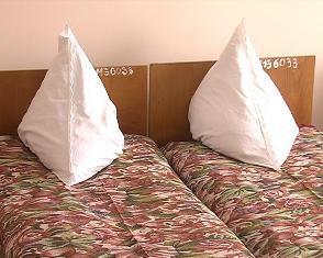 Мер Рівного пообіцяв купити на 40 тисяч ліжок, на яких ніколи не лежатиме
