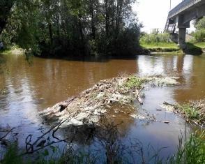 У Кузнецовську мало не втопився школяр