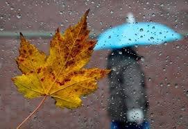 Прогноз погоди від Херсонського ОЦГМ… дощитиме