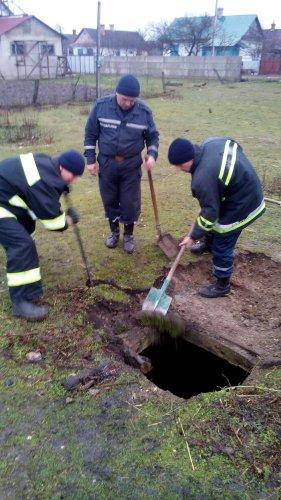 На Рівненщині з колодязя рятували... коня (фото) - фото 1
