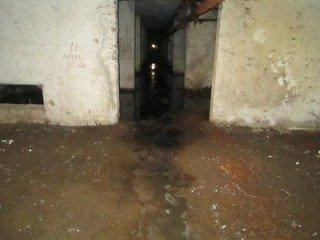 "Результат пошуку зображень за запитом ""затопило підвал"""